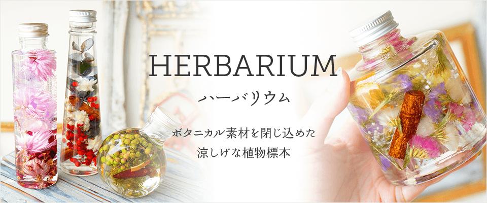ハーバリウム ボタニカル素材を閉じ込めた涼しげな植物標本