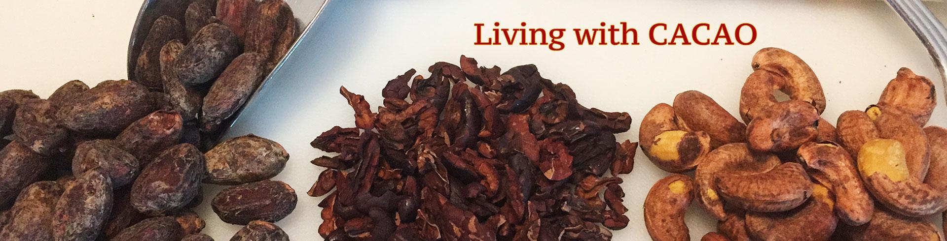 ベトナム産高級チョコレートSOCOLA ロータスとサクラ Living with CACAO